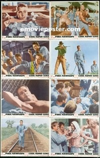 #268 COOL HAND LUKE set of 8 LCs 1967 Newman