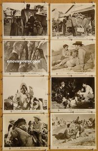 5862 7 MEN FROM NOW 8 vintage 8x10 stills '56 Randolph Scott