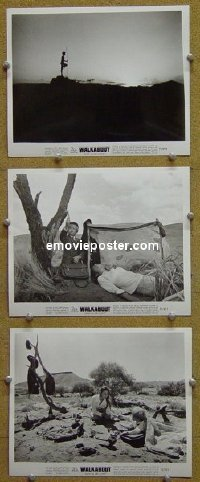#4187 WALKABOUT 3 8x10s71 Roeg classic