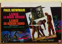 f017 COOL HAND LUKE Belgian movie poster '67 Paul Newman classic!