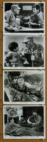 s340 YOUNG & THE BRAVE 8 8x10 movie stills '63 Rory Calhoun, Bendix
