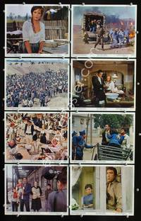 y086 25th HOUR 8 color 8x10 movie stills '67 Anthony Quinn, Lisi