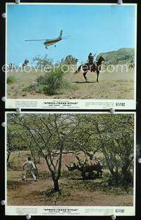 y529 AFRICA - TEXAS STYLE 2 color 8x10 movie stills '67 rhino attack!