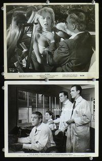 3y246 4D MAN 2 8x10s '59 Robert Strauss, Lee Meriwether & James Congdon watch experiment gone wrong!