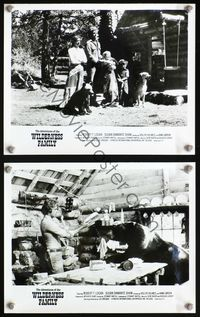 3y257 ADVENTURES OF THE WILDERNESS FAMILY 2 8x10 stills '75 cool images of family living w/bear!
