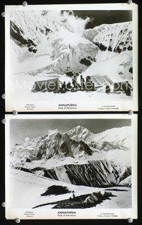 3y271 ANNAPURNA 2 8x10 movie stills '53 great images from Himalaya climbing adventure documentary!