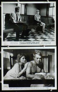 3y284 BABY THE RAIN MUST FALL 2 8x10 movie stills '65 cool images of Steve McQueen w/Lee Remick!