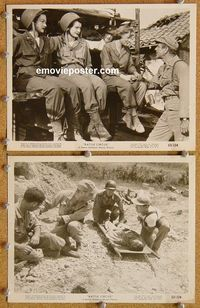 3y295 BATTLE CIRCUS 2 8x10 movie stills '53 cool images of soldier Humphrey Bogart, June Allyson