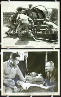 3y296 BATTLE CIRCUS 2 8x10 stills '53 great images of Humphrey Bogart w/helicopter & wounded kid!