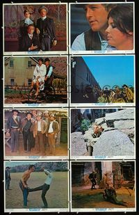5h078 BUTCH CASSIDY & THE SUNDANCE KID 8 LCs '69 Paul Newman, Robert Redford, Katharine Ross