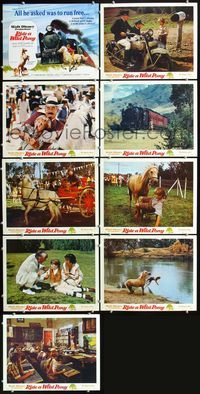 7m041 RIDE A WILD PONY 9 LCs '76 Disney, cool artwork of boy on white horse riding alongside train!