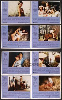 tender cousins 1980 full movie download