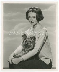 1m013 AUDREY HEPBURN 8.25x10 still '59 with her dog, before appearing in Nun's Story by Bert Six!