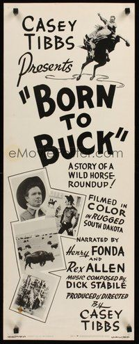 2d074 BORN TO BUCK insert '68 Casey Tibbs presents & directs, cool rodeo artwork!