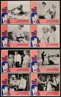 2g063 ANGRY BREED 8 LCs '68 bikers buck the establishment, Jan Sterling, James MacArthur!