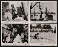 2r041 COMPANEROS 22 8x10 stills '72 Sergio Corbucci directed, Franco Nero in action!