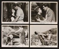 2r015 THIS EARTH IS MINE 36 8x10 stills '59 many great images of Rock Hudson & Jean Simmons!