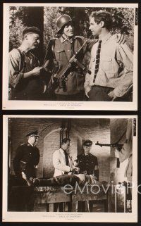 3j064 CIRCLE OF DECEPTION 15 8x10 stills '60 WWII spy Bradford Dillman, sexy Suzy Parker!