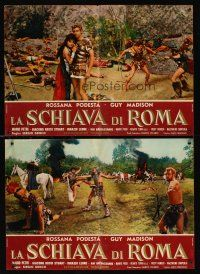 5j175 SLAVE OF ROME 11 Italian photobustas '61 Guy Madison, Podesta, sword & sandal gladiators!