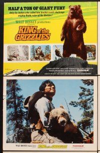 5r032 KING OF THE GRIZZLIES 9 LCs '70 Walt Disney, half a ton of giant fury, ruler of the Rockies!