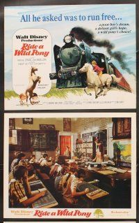 5r042 RIDE A WILD PONY 9 LCs '76 Disney, a rich girl, a poor boy, Australian horses!