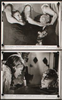 6z073 FROZEN DEAD 15 8x10 stills '66 Dana Andrews, Anna Palk, Nazis frozen alive for 20 years!