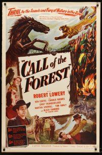 7c077 CALL OF THE FOREST 1sh '49 Robert Lowery, Ken Curtis, nature in the raw, outdoor adventure!