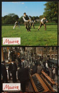 9y036 MAURICE 8 color English FOH LCs '87 Hugh Grant, gay romance by James Ivory & Ismail Merchant!