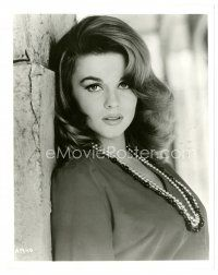 1m037 ANN-MARGRET 8x10 still '60s close up of the sexy star leaned against wall!