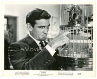 1m057 BIRDS 8x10 still '63 Alfred Hitchcock classic, close up of Rod Taylor bit by bird in cage!