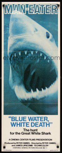 3m041 BLUE WATER, WHITE DEATH insert '71 super close image of great white shark with open mouth!