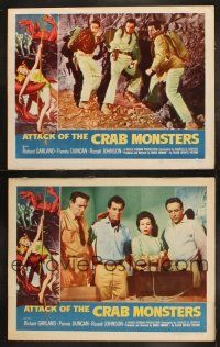 3w172 ATTACK OF THE CRAB MONSTERS 2 LCs '57 Richard Garland, Pamela Duncan, Roger Corman horror!