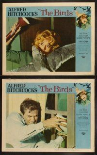 3w102 BIRDS 8 LCs '63 Alfred Hitchcock, Tippi Hedren, Rod Taylor, Tandy, classic horror images!