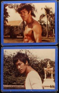 5a029 FISTS OF FURY 15 Swiss LCs '73 Bruce Lee classic, great kung fu images!