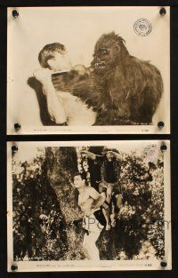 7h944 KING OF THE CONGO 2 8x10 stills '52 Buster Crabbe as The Mighty Thunda in Columbia serial!