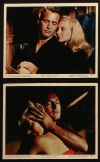 7h038 SWEET BIRD OF YOUTH 11 color 8x10 stills '62 Paul Newman, Geraldine Page, Shirley Knight!