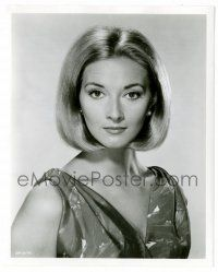 8h235 DANIELA BIANCHI TV 8.25x10 still '64 guest starring in 3-part Dr. Kildare episode!