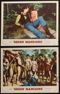 8y798 GREEN MANSIONS 5 LCs '59 gorgeous Audrey Hepburn, Anthony Perkins, Lee J. Cobb!