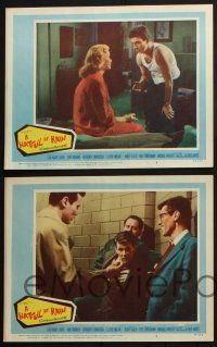 8y801 HATFUL OF RAIN 5 LCs '57 Fred Zinnemann early drug classic, Eva Marie Saint & Don Murray!