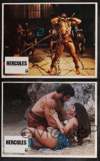 8y275 HERCULES 8 LCs '83 Lou Ferrigno as the strongest man in the world, sexy Sybil Danning!