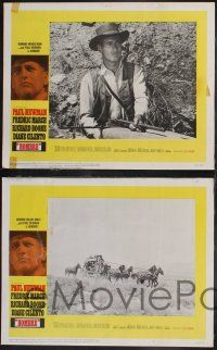 8y283 HOMBRE 8 LCs '66 Paul Newman, Richard Boone, Fredric March, Diane Cilento!