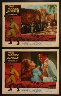 8y442 NAKED JUNGLE 8 LCs R60 Charlton Heston & Eleanor Parker, produced by George Pal!