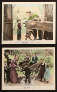1e034 ALL MINE TO GIVE 10 color 8x10 stills '57 Glynis Johns, Cameron Mitchell & children!