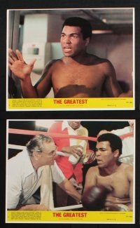 1e081 GREATEST 8 8x10 mini LCs '77 great images of heavyweight boxing champ Muhammad Ali!