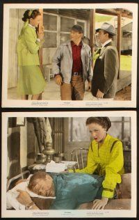 1e063 TYCOON 9 color 8x10 stills '47 John Wayne, Laraine Day, Anthony Quinn, cool images!
