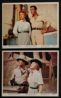4e028 VALLEY OF THE KINGS 12 color 8x10 stills '54 great images of Robert Taylor & Eleanor Parker!