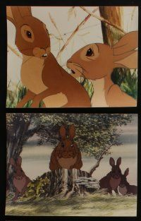 4e003 WATERSHIP DOWN 28 color Dutch 8x10.25 stills '78 based on Richard Adams' best seller,bunny art