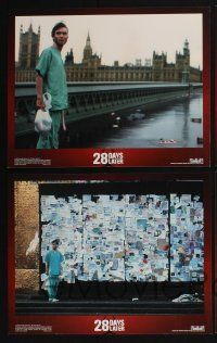 4k061 28 DAYS LATER 8 LCs '03 Cillian Murphy vs. zombies in London, directed by Danny Boyle!