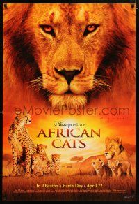 4r023 AFRICAN CATS advance DS 1sh '11 Disney, cool super close up of lion & cheetah!