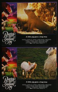 5g065 BABE 8 int'l LCs '95 James Cromwell, classic talking pig comedy, the gallant pig!